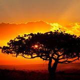 ROV - Gambia e Senegal, terre di tradizioni e di cultura