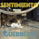 No 5 SENTIMIENTO GUERRERO / RADIO MIXANTEÑA