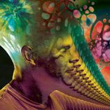 A Monstrous Psychedelic Bubble Exploding in Your Mind  - Vol. 8 by THE AMORPHOUS ANDROGYNOUS