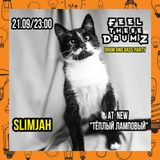 SLIMJAH - FEEL THESE DRUMZ vol.8 PROMO MIX
