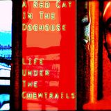 A RED CAT IN THE DOG HOUSE - The MIXOLOGY Mixtape
