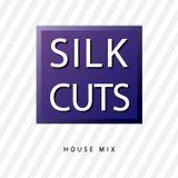 Silk Cuts - 45 min Soulful House Mix