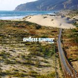 "Endless Summer vol.04 by Switch ""Groov"" Exp."