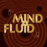 Mind Fluid Radio Show & Podcast 12/01/16 - Favourite Tracks of 2015 Pt. 2