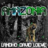 Landho & David Loewe - Amazonia (Original mix)