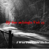 Dj-bac mixtape Vol. 13 (I Wiss You Could Shelter Me)
