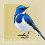 Chromacast 37 - Forerunners