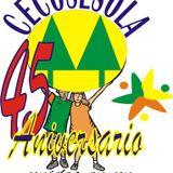 Η χώρα του Ποτέ Ποτέ, 11 Μάη 2013: Σεκοσόλα, μια ομπρέλα για κολεκτίβες στη Βενεζουέλα