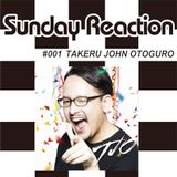 SUNDAY REACTION PROMO MIX by TJO June 15, 2015
