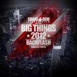 Big Things Vol.14 - the 2012 Backflash