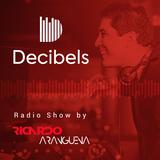 DECIBELS Radio Show presented by Ricardo Arangüena - Episode 8 - House History