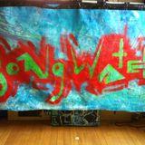 Bongwater  Promo Mix