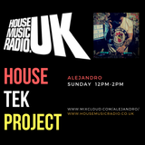 House Tek Project - (Alejandro - Feb 4th)