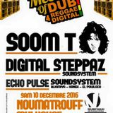 Echo Pulse Sound System - Live au Noumatrouff - Mulhouse- Meeting of DUB 4 reggae digital - 12.2016