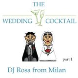 DJ Rosa from Milan - The Wedding Cocktail - part 1