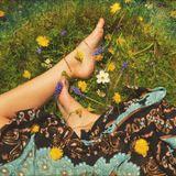 Shoomadisco - Primavera on da dancefloor