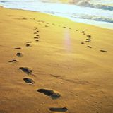 Menna Barreto - Steps into Deep