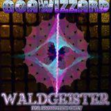 Goawizzard - Waldgeister [Festival-Promo-Mix]