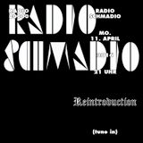 Radio Schmadio Nr.42 - Reintroduction