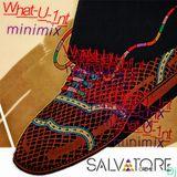 Salvatore Crème Dj - What_U_1nt (minimix) 2013
