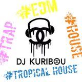 DJ KURIBOU SUMMER MIX