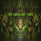 Full Lotus At The Crescent Tree 25th August 2019