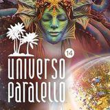 AkaSha Vibes @ Universo paralello 2017/2018- 303 stage
