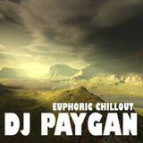 DJ Paygan - Euphoric Chillout