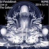 DJ PandaBinah - Live @ The Gallery - NUMB - 2014-12-15
