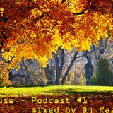 Dj Razvi S - Deep House - Podcast #1