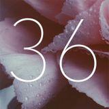 #36 - Carpe hygge