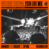 dBridge b2b Goldie ft SP:MC - Live at Outlook 2018