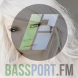 #57 BassPort FM - Dec 29th 2014 (Special Guest DJ Madlogik)