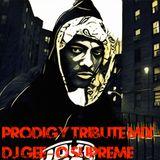 Gee-O aka DJ Gee-O Supreme Prodigy Tribute Mix