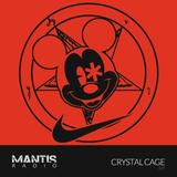 Mantis Radio 289 + Crystal Cage