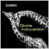 DJ SoundNexx Divine Instruvention Gruv Mixx