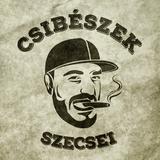 2016.08.01. - CSIBÉSZEK - Romkert Budapest (guest Purebeat) - Monday