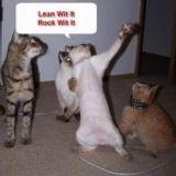 We cats be dancing.