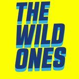 THE WILD ONES -FFD HOT 103.9 FM 4-21-18