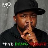 Phife Dawg - DJ A.D.S Tribute Mix
