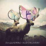 dj quadrro - acid delivery