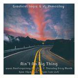 Gradient Logic & dj ShmeeJay - Ain't No Big Thing - 2017-08-17