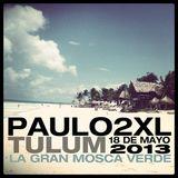 PAULO2XL_TULUM_La Gran Mosca Verde_mayo2013
