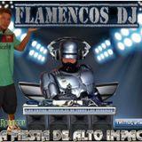 FLAMENCOS DJ- TECHNO 1