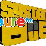 SystemDub radio show 31.05.2014 - Pure FM