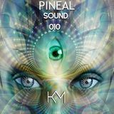 Pineal Sound 010 - Kevin Masoni New Year 2017