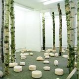 I Am Going Into The Birch Forest As My Pills Will Be Taking Effect Soon
