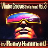 Winter Grooves (Hot In Herre) Vol. 3 (RoNNy HaMMoND iN ThE MiXx)