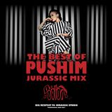 THE BEST OF PUSHIM Mixed by DJ ORION ¨JURASSIC MIX¨