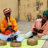 Bhangra set